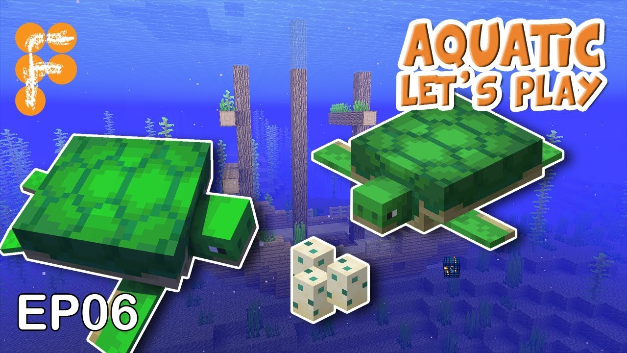 Let39s-Play-Aquatic-EP6-Turtle-Time