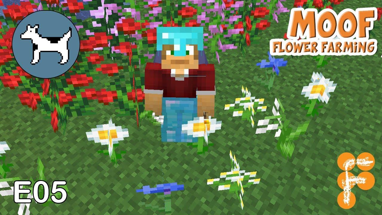 Moof-S01E05-Flower-Farming